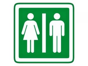 Piktogram Dámy a Páni zelený