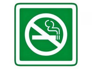 Piktogram zákaz kouření zelený