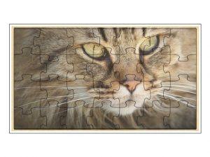Puzzle Kočka barevná
