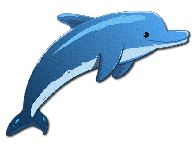 nažehlovačka s delfínem