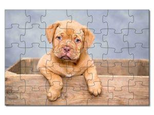 Puzzle A4 pes