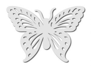 motýl bílý