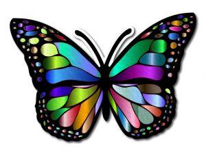 Filcový motýl 05