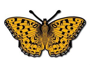 Filcový motýl 07