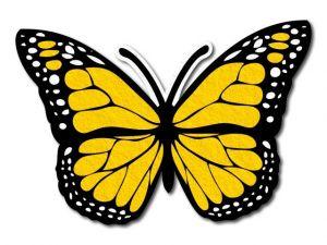 Filcový motýl 08