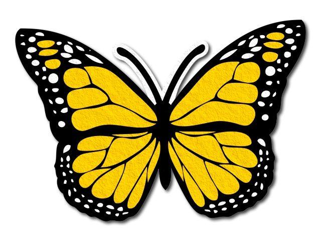 filcový motýl