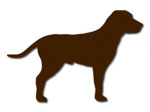 filcový pes