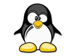 Filcový tučňák tištěný
