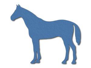 filcový kůň výřez