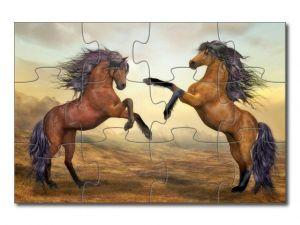 puzzle s koňmi - 12 dílků