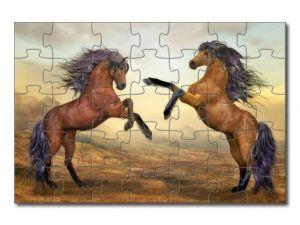 puzzle s koňmi - 35 dílků