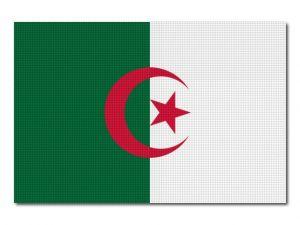 Alžírská vlajka