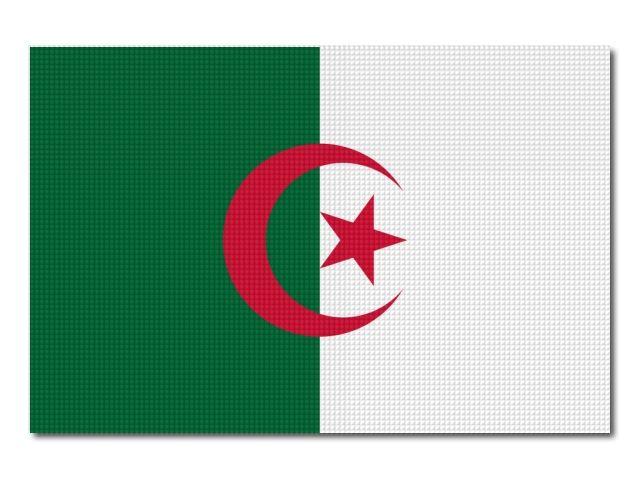 Tištěná alžírská vlajka