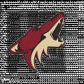 Potisk Phoenix Coyotes Pelisport