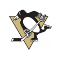 Potisk Pittsburgh Penguins